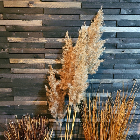 8 boho pampas grass stems 3.5 ft stems